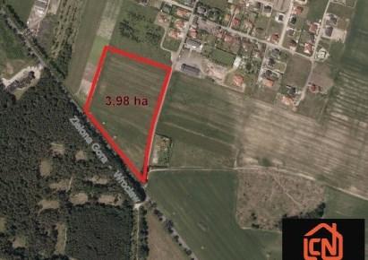 działka na sprzedaż - Lubin (gw), Miroszowice